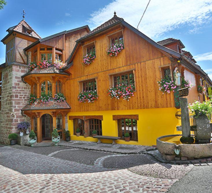 Terre des Vosges août 2019